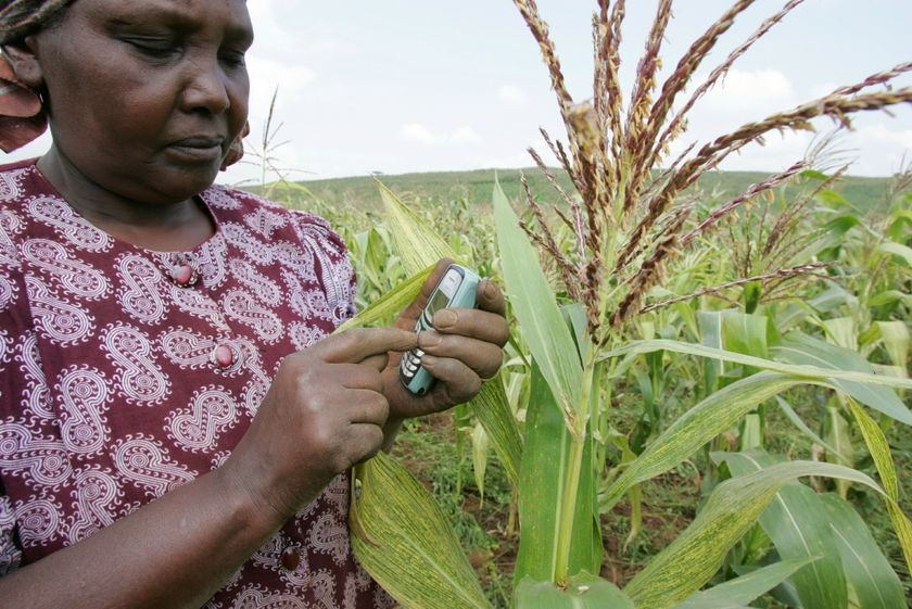 Kenyan Farmer checking corn prices via SMS, 2005
