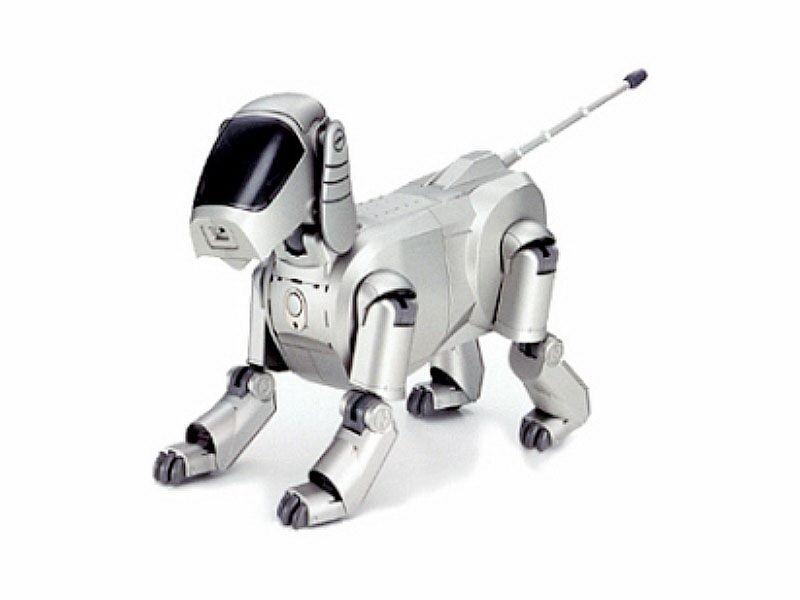 "<h2 class=""title"">The AIBO robotic pet dog</h2>"
